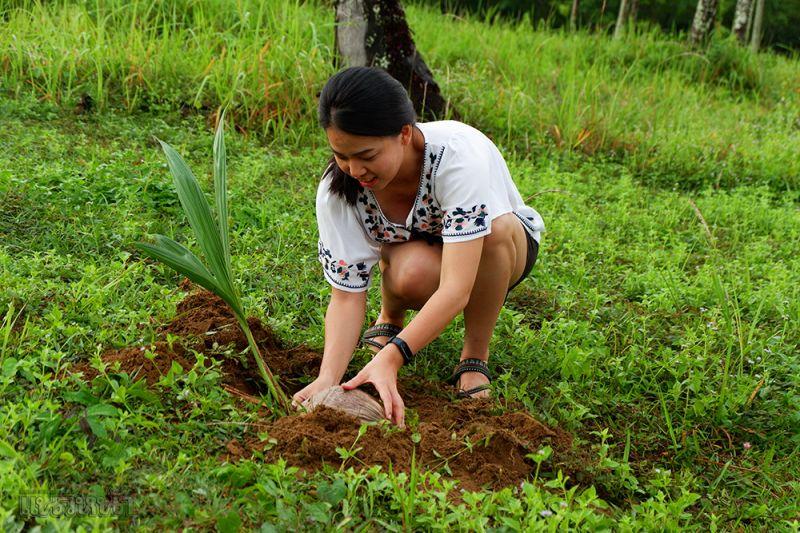 เพิ่มพื้นที่สีเขียวให้กับเกาะหมาก ลงมือปลูกต้นมะพร้าวกันคนละต้น