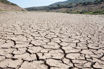 เตรียมพร้อม6มาตรการรับมือภัยแล้ง เกษตรฯแจงยิบผลขับเคลื่อนลดความเสี่ยงเผชิญเหตุ