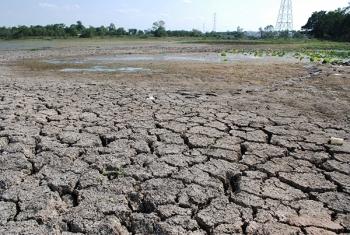 9จังหวัดภาคกลางเตรียมพร้อม รับมือภัยแล้งลดความเสียหายพืชผลการเกษตร