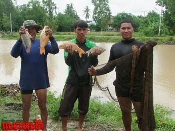 พลิกวิกฤตเป็นโอกาส!น้ำท่วมพื้นที่เกษตร ชาวบุรีรัมย์หาปลาเลี้ยงชีพแทน