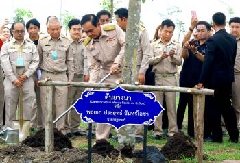 """ทส.-มท.ลุยปลูกต้นไม้ให้แผ่นดิน """"บิ๊กตู่""""นำร่องกรุงเก่า-ตั้งเป้า10ล.กล้าทั่วไทย"""