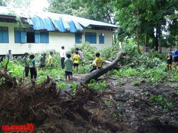 พายุถล่มบุรีรัมย์ ต้นโมกยักษ์อายุ50ปีโค่นทับอาคารเรียนพัง