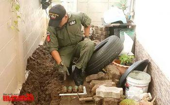เจ้าของบ้านผวาพบระเบิด4ลูกฝังดินริมรั้ว