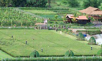 รายงานพิเศษ : กระทรวงเกษตรฯขับเคลื่อน5ประสาน สืบสานเกษตรทฤษฎีใหม่ถวายในหลวง