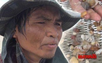 อดีตหนุ่มออฟฟิศพลิกชีวิต มุ่ง'คราด...หอยเสียบ'