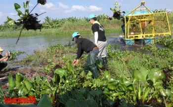 นายอำเภอชัยนาท-ชาวบ้านลุยกำจัดผักตบชวา หวังเพิ่มพื้นที่เก็บน้ำ