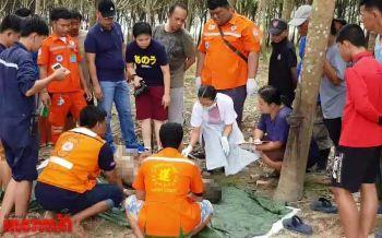 ยิงรัว8นัดประธานชุมชนหมู่บ้าน ตายจมกองเลือดกลางสวนยางระยอง