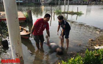 หนุ่มก่อสร้างนั่งก๊งเหล้ากับเพื่อน เมาลงว่ายน้ำเก็บผักบุ้งดับ