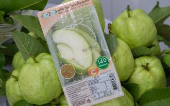 SME \'พลังผัก\'ชวนเกษตรกร ขายผลผลิตผ่านร้านเซเว่นฯ