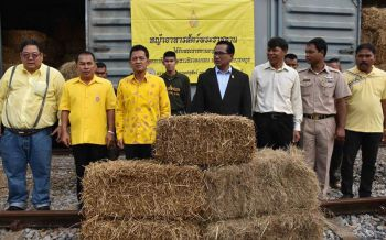 ร.10พระราชทานหญ้าอาหารสัตว์ช่วยเหลือเกษตรกรนครศรีธรรมราช