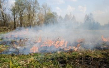 ปภ.ขับเคลื่อน4มาตรการ บังคับใช้กฎหมายป้องกันไฟป่าหมอกควัน