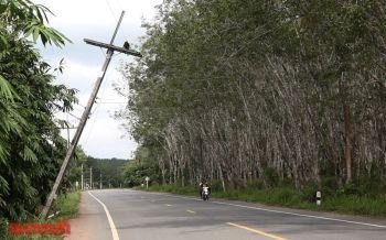 เสาไฟฟ้าแรงสูงเอียงหวิดล้ม ชาวบ้านกลัวอุบัติเหตุ-วอนหน่วยงานเร่งแก้ไข