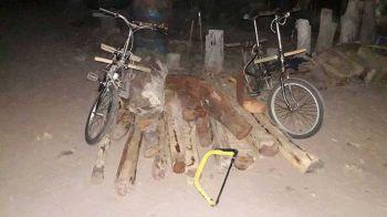 กองทัพมดมอดไม้เขมร อาศัยหน้าแล้งลอบตัดไม้พะยูงฝั่งไทย
