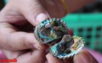 สาวเจ้าของร้านอาหารค้นพบ\'หอยแครงสายพันธุ์ใหม่\'อุดมไปด้วยก้อนหิน-ดินน้ำมัน