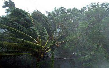 แจงผลกระทบวาตภัย16จว.เผย54จว.รับมือพายุฝนลมแรง23-24ก.พ.นี้