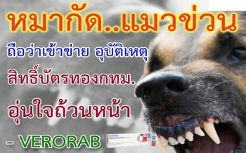 รู้แล้วบอกต่อ!คนถือ'บัตรทอง'กทม. หมา-แมวกัดข่วนฉีดวัคซีนป้องกันพิษ'สุนัขบ้า'ฟรี