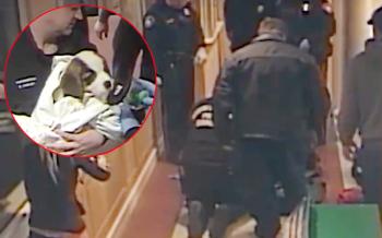 หญิงอุ้มร่างสุนัขไร้วิญญาณเข้าสถานีตำรวจ จนท.กรูเข้าช่วยชีวิตราวปาฏิหาริย์ (ชมคลิป)