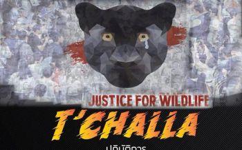 ไม่ปล่อยให้เรื่องเงียบ!กลุ่มT'challaนัดรวมพลปลุกใจเสือดำวันอาทิตย์นี้ที่หอศิลป์