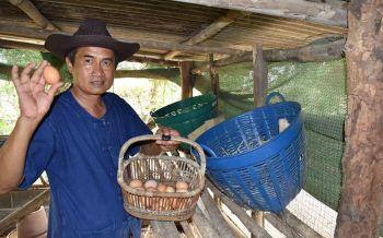 ชีวิตพอเพียง!รองผอ.รพ.ทำสวนผักอินทรีย์ พลิกบทบาทจากหมอสู่เกษตรกร