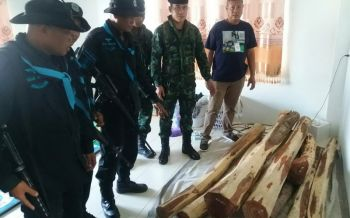 จับไม้พะยูงซุกโกดังริมฝั่งแม่น้ำโขงเตรียมส่งไปลาว
