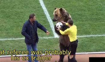 ลีกรัสเซีย พาหมี ส่งบอลให้ผู้ตัดสินเปิดสนามบอลด.3
