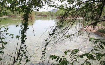 กอ.รมน.ลงพื้นที่แก้ปัญหา\'ฟาร์มหมู\'ราชบุรี หลังชาวบ้านร้องปล่อยน้ำเสียลงลำน้ำ