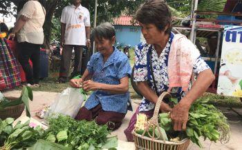 ไม่เสียค่าเช่า! ความสุขของชาวสุรินทร์หอบหิ้วผักพื้นบ้านมาวางขายตลาดประชารัฐแบกะดิน