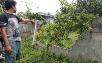 ชาวบ้านผวาโขลงช้างป่าสลักพระ บุกพังทรัพย์สิน-กินพืชไร่เสียหายยับ (ประมวลภาพ-ชมคลิป)