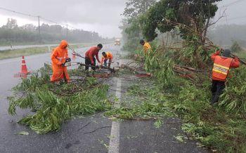 พิษณุโลกฝนถล่มหนักลมกรรโชกแรงพัดต้มไม้โค่นขวางถนน-บ้านเรือนปชช.พังยับ
