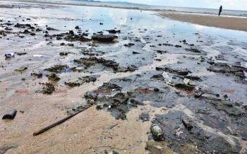 พบ\'ทะเลสีดำ\'เหม็นคลุ้ง เต็มหาดจอมเทียน วอนจนท.ตรวจสอบ