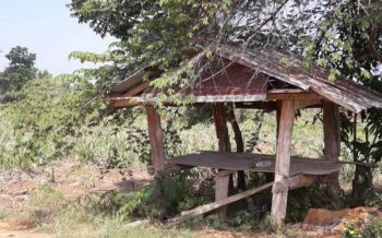 ฟ้าพิโรธผ่ากระท่อมกลางสวนอ้อย ชาวบ้านหลบฝนโดนจังๆสลบไม่ได้สติ5ราย