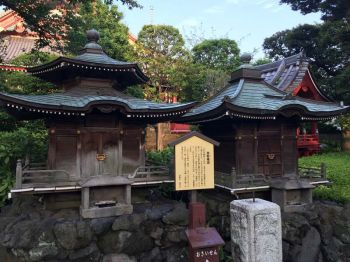 ตะลอนเที่ยว : โตเกียว ไปกี่ทีก็ไม่มีเบื่อ : Tokyo Again and Again