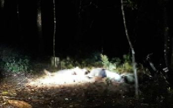 ตำรวจตั้ง2ประเด็น ปมคนร้ายฆ่าหมู่4ศพกลางสวนยางขณะมาร่อนทอง