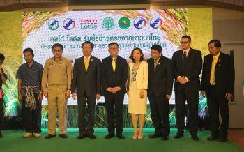 เกษตรฯจับมือเทสโก้ โลตัส สนับสนุนชาวนาไทยเพิ่มการรับซื้อข้าวหอมมะลิแท้100%