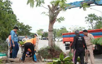 ช่วยเหลือบรรเทาทุกข์ชาวนราธิวาส หลังพายุถล่มบ้านพังต้นไม้โค่น
