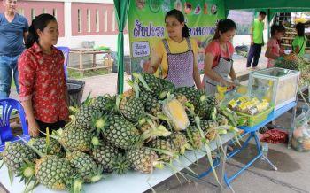 เกษตรฯเร่งระบาย'สับปะรด' เล็งจีทูจีส่งออก5กลุ่มประเทศ