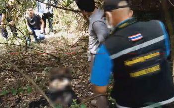 ผงะ! พบศพเหลือแต่โครงกระดูกดับปริศนาในป่ากระถิน