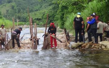 นอภ.พิปูนนำทีมรื้อถอน\'เล่-โพงพาง\'ต้นแม่น้ำตาปี หวังอนุรักษ์ปลาภูเขาหายาก