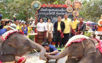 สุรินทร์เปิดยิ่งใหญ่OTOPนวัตวิถี ชวนเที่ยวชุมชนเลี้ยงช้างใหญ่ที่สุดในโลก