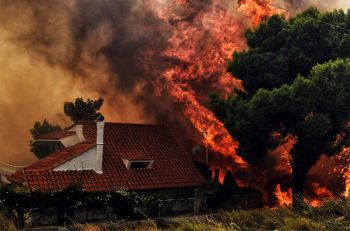 ไฟป่า\'กรีซ\'รุนแรงสุดในรอบ10ปี  ผลาญบ้านปชช.เรียบ-คร่า50ชีวิต (ประมวลภาพ)