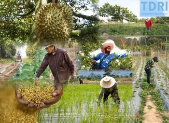 บทความพิเศษ : สินเชื่อกับการพัฒนาคุณภาพชีวิต  เกษตรกร:ปัญหากับดักหนี้