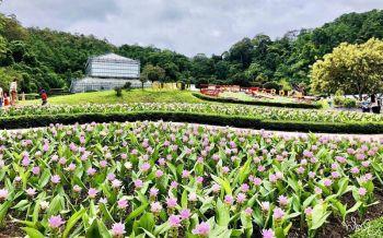สวนพฤกษศาสตร์ฯเตรียมเปิดให้ประชาชนเข้าชมฟรีในวันแม่