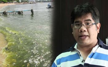 ทะเลร้องไห้! ดร.ธรณ์โพสต์'อ่าวไทยกำลังเน่า'น้ำเขียวปี๋ ชำแหละต้นเหตุ แนะทางแก้