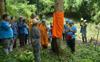 เลยร่วมใจบวชป่า! ปลูกต้นไม้ทำฝายชะลอน้ำ เฉลิมพระเกียรติวันแม่แห่งชาติ
