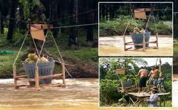 สู้บนวิกฤติ!! พะโต๊ะน้ำท่วมหนักเสียหายกว่า10ล้าน เส้นทางขาดหันใช้กระเช้าขนทุเรียน
