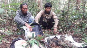 จับ2พรานใจบาป ดอดล่าอีเห็นลายเสือ เขตรักษาพันธุ์สัตว์ป่า