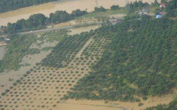 \'เบบินคา\'ทำพิษ! กษ.สรุปพื้นที่เกษตรประสบอุทกภัย7พันไร่ใน5จว.ภาคเหนือ