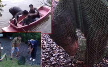 เปิดคลิปปฏิบัติการกู้ภัยลงเรือช่วยชีวิต \'ลูกหมีควาย\'พลัดหลงแม่ชายป่าเขาใหญ่