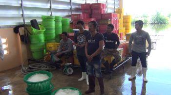 ชุดเฉพาะกิจพังงาออกตรวจสภาพการจ้าง-การทำงาน แรงงานไทยและต่างด้าว