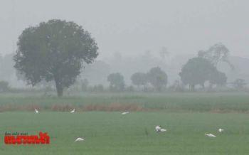 ใต้ฝนตกหนัก ภาคอื่นๆฝนลดลง อากาศเริ่มเย็นในช่วงเช้า